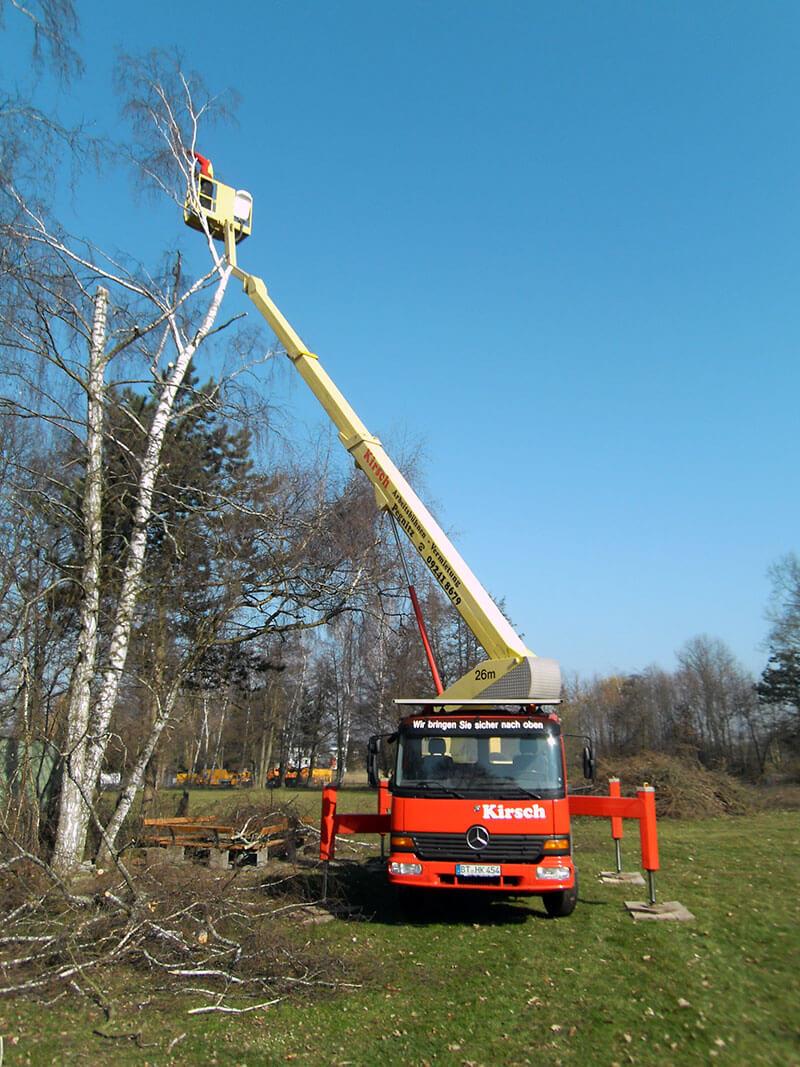 Baumfällarbeiten eine Dienstleistung von Helmut Kirsch GmbH